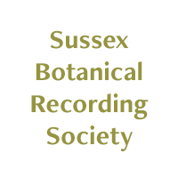 Sussex Botanical Recording Society